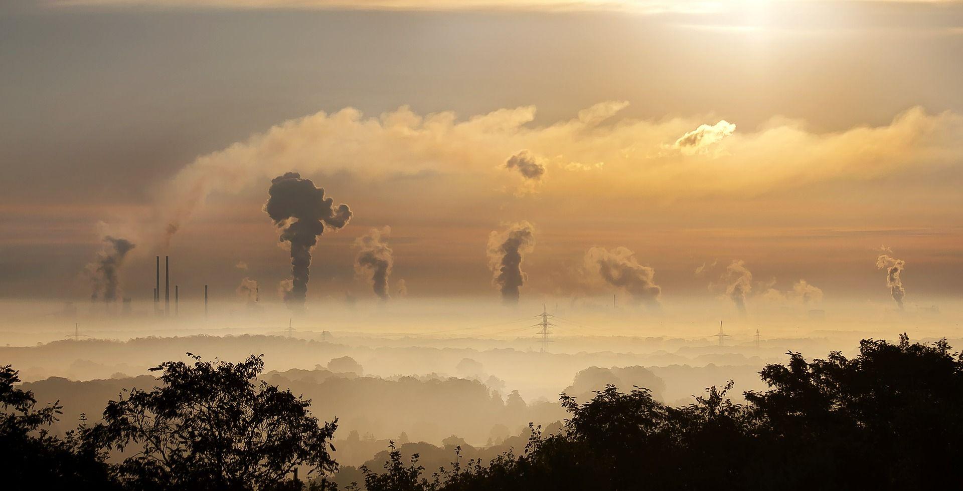 """Día Mundial """"Sin Coches"""": la importancia de promover el compromiso con la transición energética"""