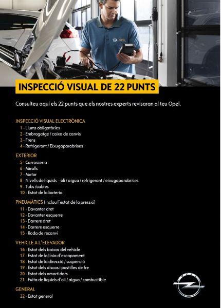 Inspecció visual de 22 punts