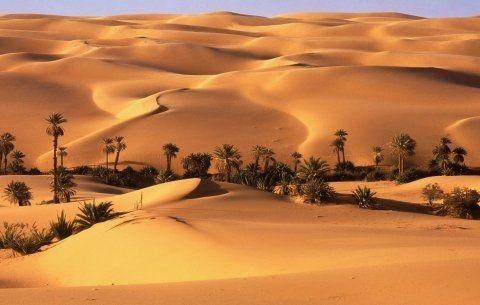 EUROMOVIL CON EL PUEBLO SAHARAUI.