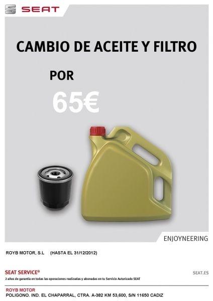 Cambios Aceite y Filtro 45 €