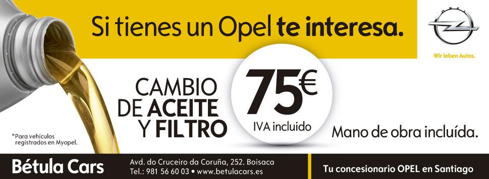Cambio de Aceite y Filtro por 75€ (IVA y Mano de Obra Incluido)