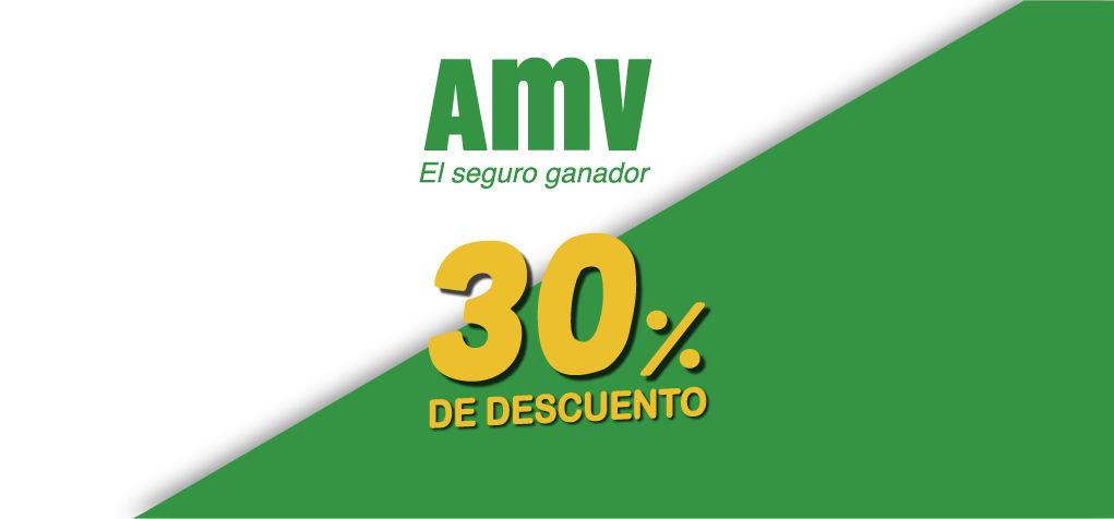 GRUPO PIAGGIO Y AMV SEGUROS 30% DE DESCUENTO EN EL SEGURO