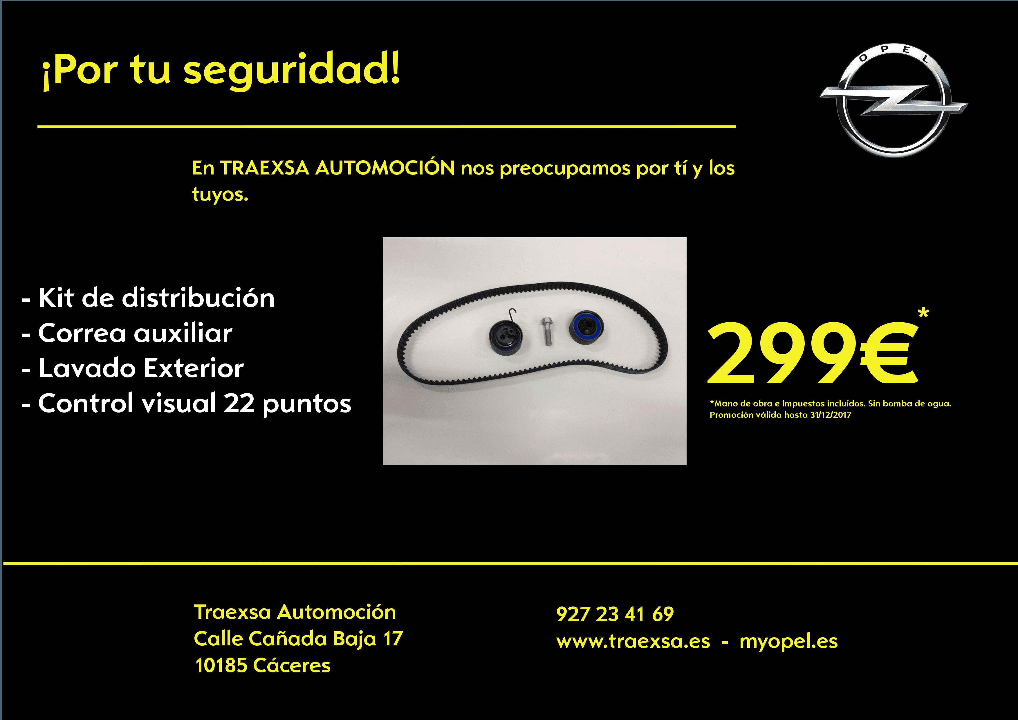 OFERTA: Kit de distribución y correa de accesorios (sin bomba de agua) 299€