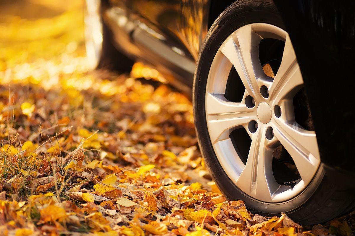 7 Consejos para poner a punto tu coche este otoño